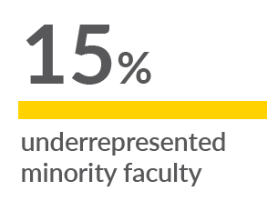 minority faculty