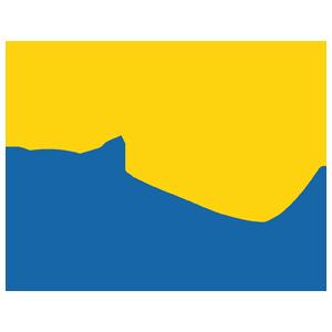 international & global analysis